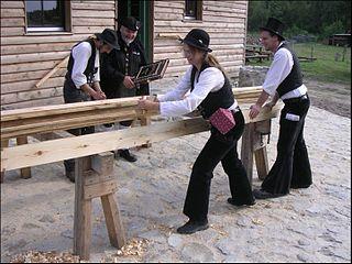 Seeking Carpenter Yogi