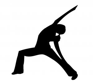 inverted warrior